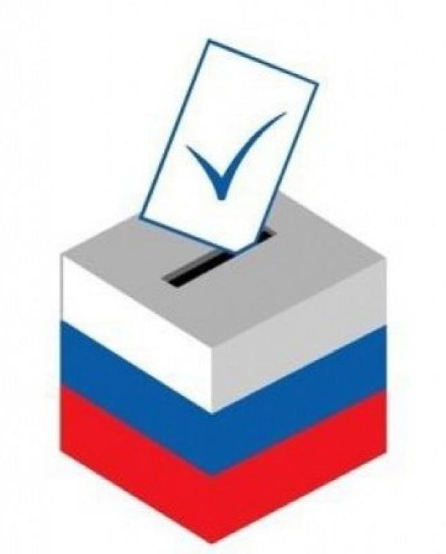 Картинка выборы главы сельсовета